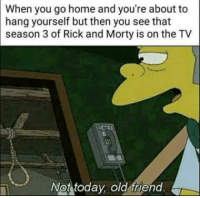 Hanging Yourself: When you go home and you're about to  hang yourself but then you see that  season 3 of Rick and Morty is on the TV  Not today, old friend