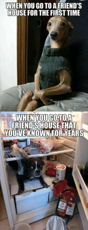 There's nothing like the bond between you and your BFF. National Best Friend Day on June 8 is one the greatest ways to show your best friend how much you love and appreciate them, especially with a perfectly funny meme about your one-of-a-kind friendship.  #bestfriends #memes #funnymemes #nationalbestfriendsday: WHEN YOU GO TO A FRIEND'S  HOUSE FOR THE FIRST TIME  WHEN YOU GO TOA  FRIEND'S HOUSE THAT  YOUVE KNOWN FORYEARS There's nothing like the bond between you and your BFF. National Best Friend Day on June 8 is one the greatest ways to show your best friend how much you love and appreciate them, especially with a perfectly funny meme about your one-of-a-kind friendship.  #bestfriends #memes #funnymemes #nationalbestfriendsday