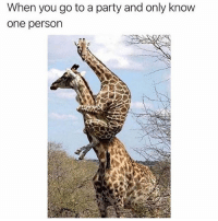 Party, Girl Memes, and One: When you go to a party and only know  one person Don't leave me I hate people @mybestiesays