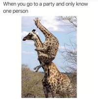 Funny, Lol, and Party: When you go to a party and only know  one person Lol tag this friend