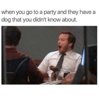 Memes, Party, and 🤖: when you go to a party and they have a  dog that you didn't know about. Follow @toptree for the dankest memes