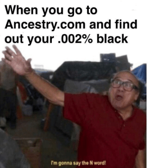 Amirite fellas?: When you go to  Ancestry.com and find  out your .002% black  I'm gonna say the N word Amirite fellas?