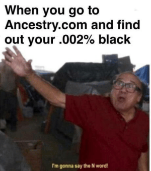 Amirite fellas?: When you go to  Ancestry.com and find  out your .002% black  rm gonna say the N word Amirite fellas?