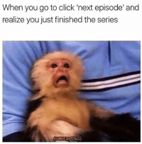 I feel this meme on a spiritual level.: When you go to click 'next episode' and  realize you just finished the series  SCREAMING) I feel this meme on a spiritual level.