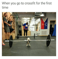 Credit: @chaos.reigns_: When you go to crossfit for the first  time  chaos reigns Credit: @chaos.reigns_