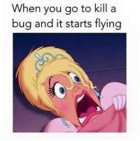Memes, 🤖, and Bug: When you go to kill a  bug and it starts flying