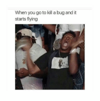 Funny, Jay, and Memes: When you go to kill a bug and it  starts flying This is me! I absolutely hate bugs I swear 😂😂😂@Dagenius_Jay33 Dagenius_Jay33 dageniuscomedy jay funny reblog retweet follow follow followme followers follower followhim followall comment comments commentbelow popular instagood iphonesia photooftheday instamood picoftheday bestoftheday instadaily igdaily instagramhub instacool me photo