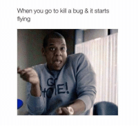 Bug, You, and When You: When you go to kill a bug & it starts  flying  El