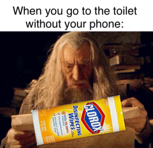 """All we have to decide is what to do with the time that is given to us.: When you go to the toilet  without your phone:  CLOROX  DISINFECTING  WIPES  Kills 99.999%  of Bacteria""""  Kills Cold & Flu Viruses  Kills StapL col MRSA  Salmonel  Strep  T  35 WET WIPES  9102 1258 All we have to decide is what to do with the time that is given to us."""