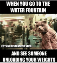 Brooooo 😣 @aestheticelite 🙏: WHEN YOU GO TO THE  WATER FOUNTAIN  @GYMMEMESANDMOTIVATION  AND SEE SOMEONE  UNLOADING YOUR WEIGHTS Brooooo 😣 @aestheticelite 🙏