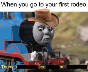 Meirl: When you go to your first rodeo  Thomas  bull  see Meirl