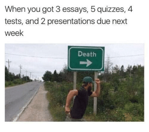 Tumblr, Death, and Http: When you got 3 essays, 5 quizzes, 4  tests, and 2 presentations due next  week  Death Follow us @studentlifeproblems
