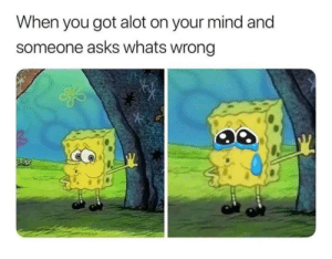 So TRUE TwT: When you got alot on your mind and  someone asks whats wrong So TRUE TwT