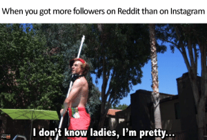 Instagram, Porn Hub, and Reddit: When you got more followers on Reddit than on Instagram  I don't know ladies, l'm pretty...  GENERATED ON  Porn hub me_irl