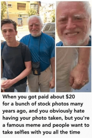 Meme, Taken, and Time: When you got paid about $20  for a bunch of stock photos many  years ago, and you obviously hate  having your photo taken, but you're  a famous meme and people want to  take selfies with you all the time MeIRL