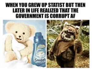 In a world of Snuggle Bear statists, be a Wicket.: WHEN YOU GREW UP STATIST BUT THEN  LATER IN LIFE REALIZED THAT THE  GOVERNMENT IS CORRUPT AF  Snuggle In a world of Snuggle Bear statists, be a Wicket.