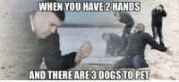 """Club, Struggle, and The Struggle Is Real: WHEN YOU HAVE 2 HANDS  AND THEREARE3 DOGSTOPET <p><a href=""""http://laughoutloud-club.tumblr.com/post/162957134963/the-struggle-is-real"""" class=""""tumblr_blog"""">laughoutloud-club</a>:</p>  <blockquote><p>The struggle is real</p></blockquote>"""