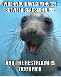 Meme, Make A, and Make: WHEN YOU HAVE 3 MINUTES  BETWEEN CLASSES TO PEE  AND THE RESTROOM iS  OCCUPIED when you have 3 minutes between classes to pee and the restroom is occupied | Make a Meme