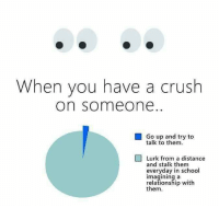 Crush, Memes, and School: When you have a crush  on someone.  Go up and try to  talk to them  Lurk from a distance  and stalk them  everyday in school  imagining a  relationship with  them