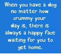 #jussayin: When you have a dog  no matter how  crummy your  day is, there is  always a happy face  waiting for you to  get home. #jussayin