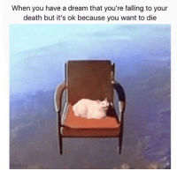 "A Dream, Memes, and Death: When you have a dream that you're falling to your  death but it's ok because you want to die <p>Falling cat memes on the rise invest invest invest! via /r/MemeEconomy <a href=""http://ift.tt/2nXmC9z"">http://ift.tt/2nXmC9z</a></p>"