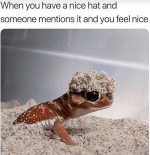 Especially when its a girl: When you have a nice hat and  someone mentions it and you feel nice Especially when its a girl
