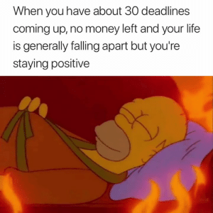 Life, Money, and You: When you have about 30 deadlines  coming up, no money left and your life  is generally falling apart but you're  staying positive This is fine 🔥😅