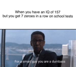 School, Smart, and Smart Guy: When you have an IQ of 157  but you get 7 zeroes in a row on school tests  For a smart guy you are a dumbass Nobody likes school