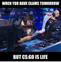 Your life? 🤔🤔🤔 CS CSGO Epic Pro Game PC Valve Steam Sparkles Where Crazy 27 Happens Csgogiveaway Globaloffensive Counterstrike Csglobaloffensive globalelite: WHEN YOU HAVE EXAMS TOMORROW  97  BUT CS:GO IS LIFE Your life? 🤔🤔🤔 CS CSGO Epic Pro Game PC Valve Steam Sparkles Where Crazy 27 Happens Csgogiveaway Globaloffensive Counterstrike Csglobaloffensive globalelite