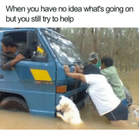 Good, Help, and Boy: When you have no idea whats going on  but you still try to help <p>It's what a good boy does.</p>