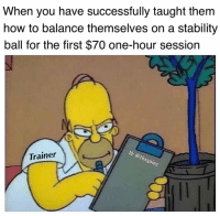 Memes, How To, and 🤖: When you have successfully taught them  how to balance themselves on a stability  ball for the first $70 one-hour session  Trainer  th  egainz 😑