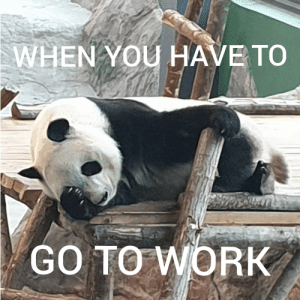 I hate Mondays: WHEN YOU HAVE TO  GO TO WORK I hate Mondays