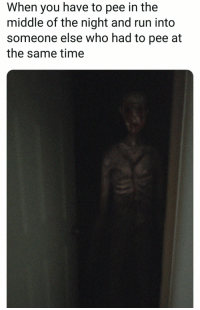 me👻irl: When you have to pee in the  middle of the night and run into  someone else who had to pee at  the same time me👻irl