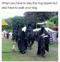Funny, The Ring, and Ring: When you have to slay the ring bearer but  also have to walk your dog The struggle | More 👉 @miinute