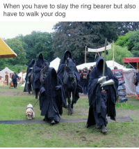 The Ring, Dog, and Ring: When you have to slay the ring bearer but also  have to walk your dog <h2>Haber pedido gato que se pasea solo</h2>