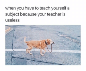 Dank, Memes, and Shit: when you have to teach yourself a  subject because your teacher is  useless Fuck this shit by alliwanabeiselchapo MORE MEMES