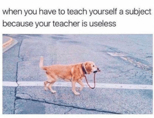 Teacher, You, and When You: when you have to teach yourself a subject  because your teacher is useless