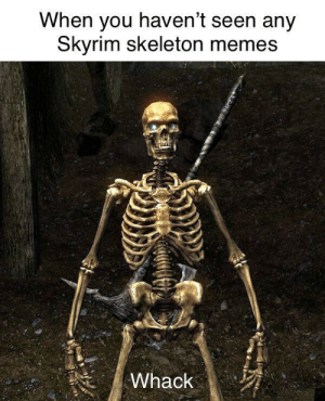 Stop, you violated the doot!: When you haven't seen any  kyrim skeleton memes Stop, you violated the doot!