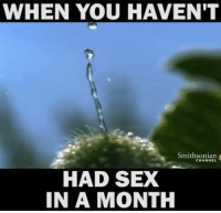 Sexual: WHEN YOU HAVEN'T  Smithsonian  HAD SEX  IN A MONTH
