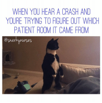 Fall, Memes, and Patient: WHEN YOU HEAR A CRASH AND  YOURE TRYING TO FIGURE OUT WHICH  PATIENT ROOM T CAME FROM  @snarky nurses Let's just hope it was a gross meal tray falling and not Bob. 😫 snarkynurses