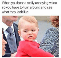 Memes, Voice, and Annoying: When you hear a really annoying voice  so you have to turn around and see  what they look like 😂💀
