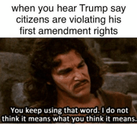 Memes, First Amendment, and Nails: when you hear Trump say  citizens are violating his  first amendment rights  You keep using that word. I do not  think it means what you think it means. @lawschoolproblemz hit the nail on the head with this meme. Hit that follow button for daily funny as hell inspirational law student memes ・・・ Also the emoluments thing. lawschoollife constitution conlaw lawschool lawschoolproblems learning dissentispatriotic