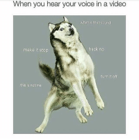 Dank, Funny, and Lmao: When you hear your voice in a video  what is that sound  make it stop  heck no  turn it off  this is not me lmaooo • • -Follow @svgnoah For More 💦 • • -Tags: meme memes trayvon funny smile followforfollow ifunny wet omg lmao rofl joke comedy likeforlike savage svgnoah lol laugh nochill offensive hood dank relatable edgy femanist filthyfrank donaldtrump optic