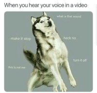 Lol, Memes, and Video: When you hear your voice in a video  what is that sound  make it stop  heck no  turn it off  this is not me Lol
