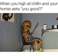 """Af, Homie, and Memes: When you high af chillin and your  homie asks """"you good?"""" 👽🤙🏻🔥...tag someone ⠀⠀⠀⠀⠀⠀⠀⠀⠀⠀⠀⠀"""