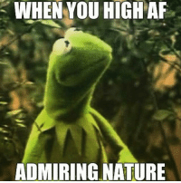 420 thc marijuana: WHEN YOU HIGHAF  ADMIRING NATURE 420 thc marijuana