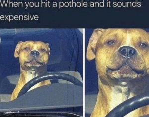 You, When You, and Hit: When you hit a pothole and it sounds  expensive