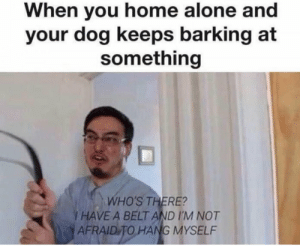 Keep barking I want to die by GlowingEyes_ FOLLOW 4 MORE MEMES.: When you home alone and  your dog keeps barking at  something  WHO'S THERE?  I HAVE A BELT AND I'M NOT  AFRAID TO HANG MYSELF Keep barking I want to die by GlowingEyes_ FOLLOW 4 MORE MEMES.