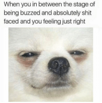 Funny, Meme, and Shit: When you in between the stage of  being buzzed and absolutely shit  faced and you feeling just right @dabmoms has been my favorite meme account since 1989