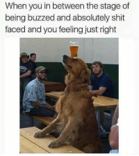 Life, Memes, and Shit: When you in between the stage of  being buzzed and absolutely shit  faced and you feeling just right How I'm trynna be every second for the rest of my whole life!! 😂😂